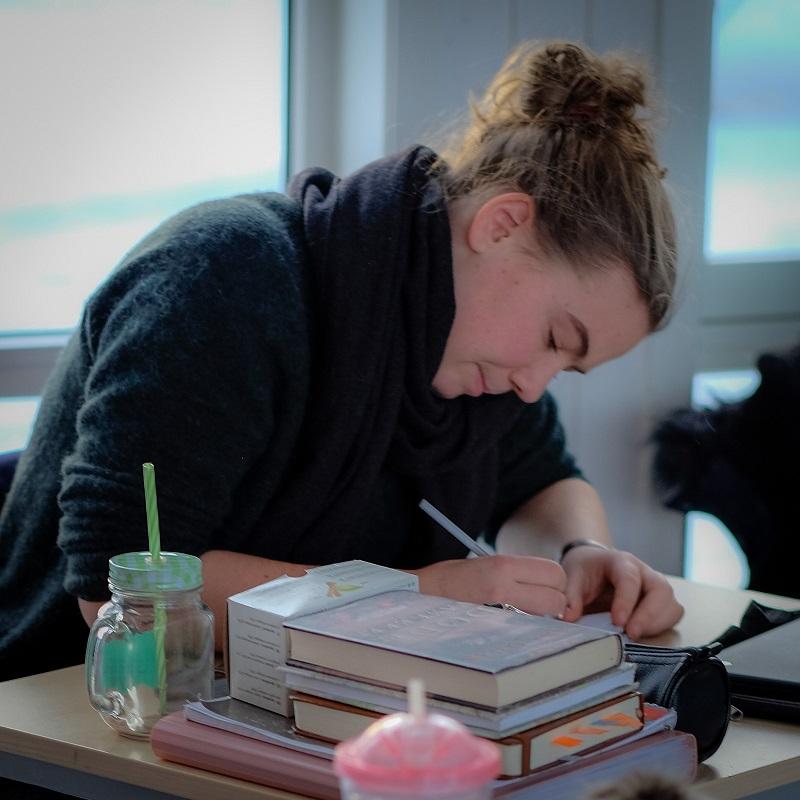 2019 Arbeidsmåte - Videregående Steinerskole på Hedemarken