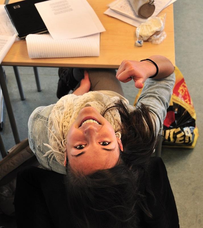 Teori - VG Steinerskole på Hedemarken